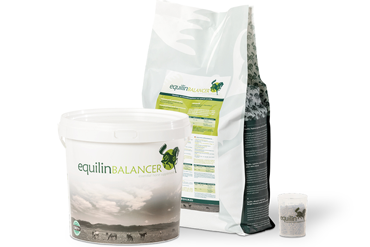 Equilin Balancer startpakket Winnaar